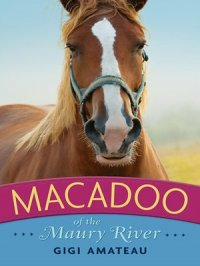 Macadoo : Horses of the Maury River Stables